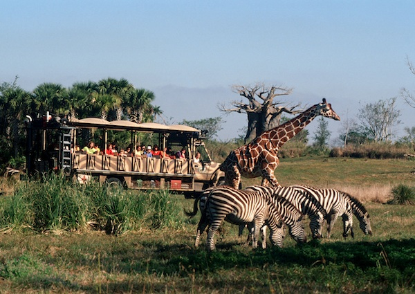 Kilimanjaro Safaris ©The Walt Disney Company
