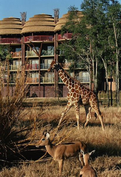 Disney's Animal Kingdom Lodge © The Walt Disney Company