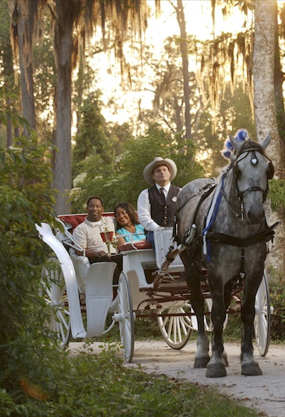 Private, horse-drawn carriage rides ©The Walt Disney Company