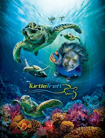 SeaWorld Turtle Trek