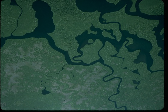 Everglades National Park Aerial View ©National Park Service
