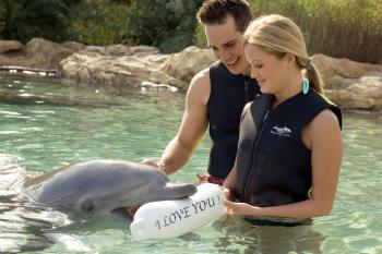Valentine's Day at Discovery Cove ©Discovery Cove