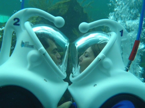 Sea Trek Kiss © Miami Seaquarium