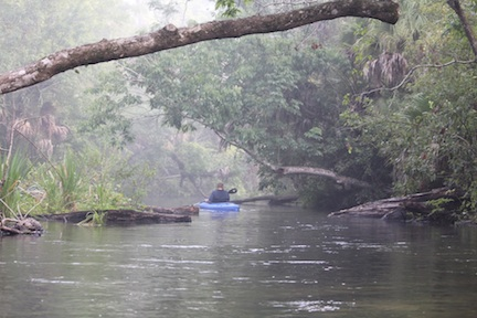 Wekiva River © Florida Department of Environmental Protection
