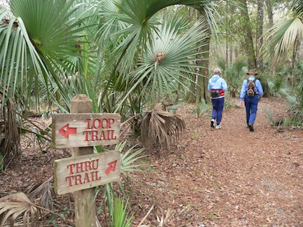 Cross Florida Greenway ©Diane Dammiller
