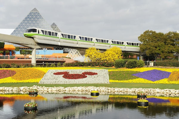 A burst of color! @ The Walt Disney Company