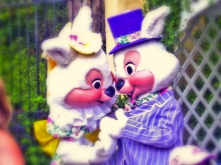 Mr. and Mrs. Bunny in Disney World