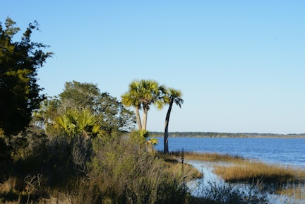Stroll to the Seineyard &#169 Palmetto Expeditions