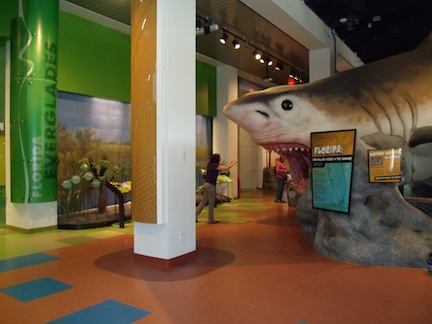 Fort Lauderdale Museum of Discovery and Science (credit: HolidayTripper.com)