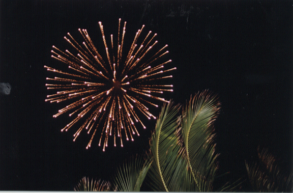 Fireworks in the Keys (credit: Florida Keys News Bureau)