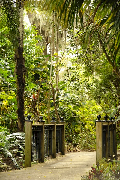 Tropical Stream Garden (credit: Leu Gardens)