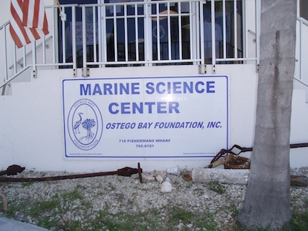 Ostego Bay Marine Science Center (credit: HolidayTripper.com)